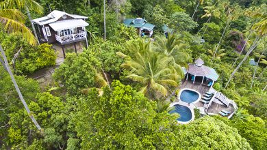 Photo of Fond Doux: Saint Lucia's Black-Owned Eco Resort