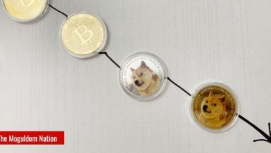 Photo of Clients Hold More Dogecoin Than BTC, ETH
