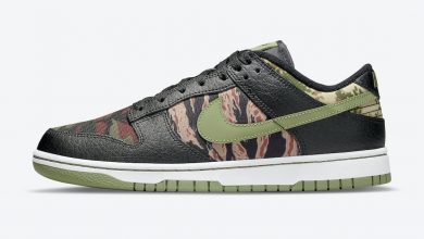 Photo of Nike Dunk Low SE Crazy Camo