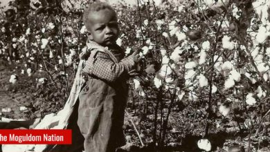Photo of Black America Tells The NAACP There Is No Such Thing As A Black Agenda Without Reparations