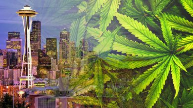 Photo of Seattle Weed Stores: Where Can I Legally Consume?