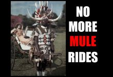 Photo of Tariq Nasheed: No More Mule Rides